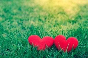 çimen iki kalp