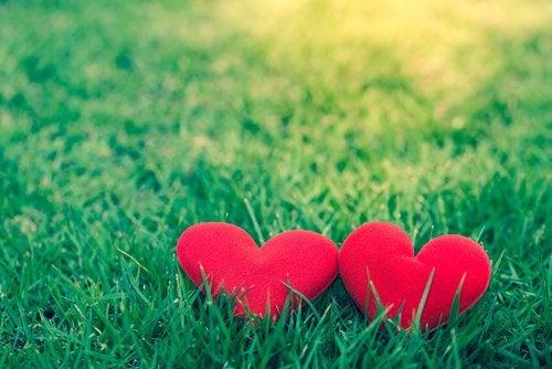Hayranlık Her Zaman Aşk İçin Mecburi Midir?