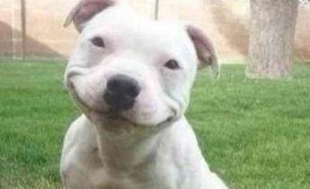 gülümseme-3