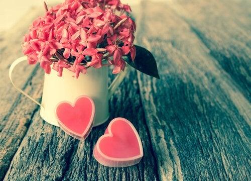 Hayatınızın Aşkı