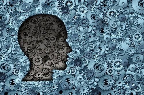 8 Yaygın Psikolojik Önyargı: Hangileri Size Uyuyor?