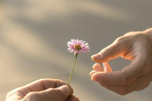 çiçek vermek