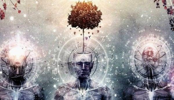Beyin Epifizi: Akla Dair Bir Bilmece