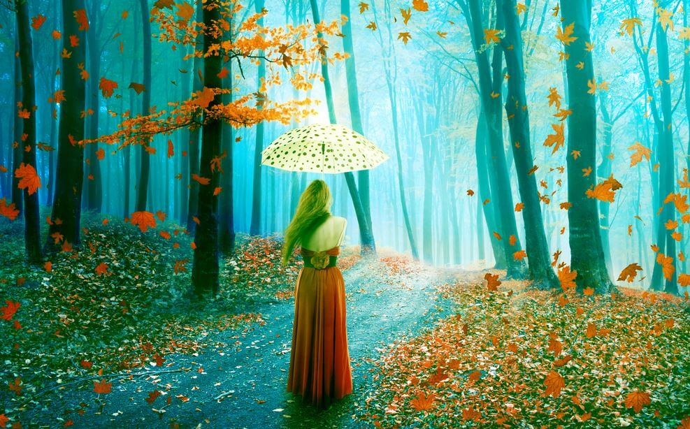 sonbaharda ormanda şemsiyeyle yürümek
