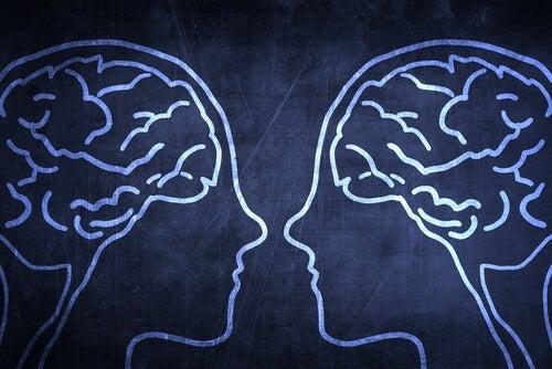 Ayna Nöronlar ve Empati
