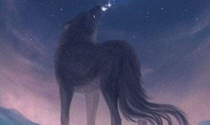 yıldızlar ve kurt
