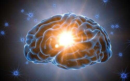 Kognitif Rezerv Beyni Korur