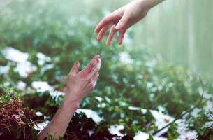 Topraktan çıkan eli tutan diğer el