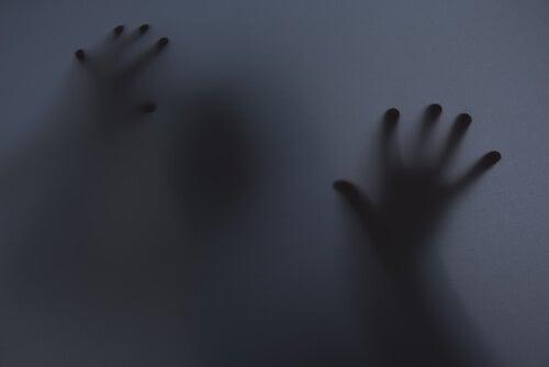camdaki eller