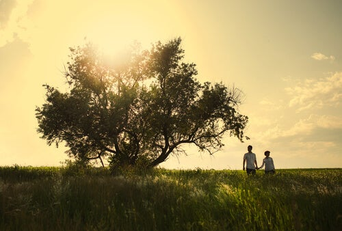 tarka, ağaç ve çift