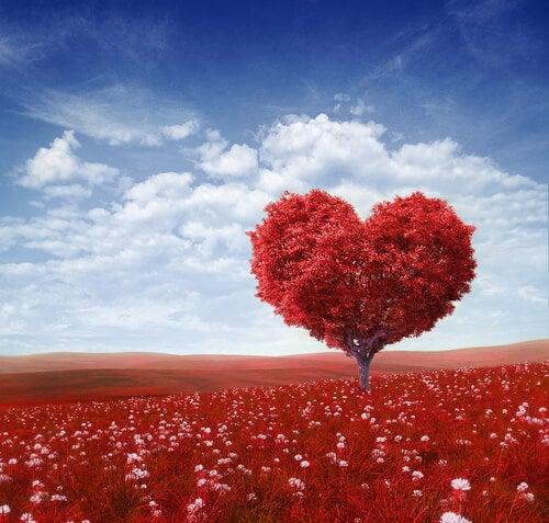 kırmızı kalp ağaç