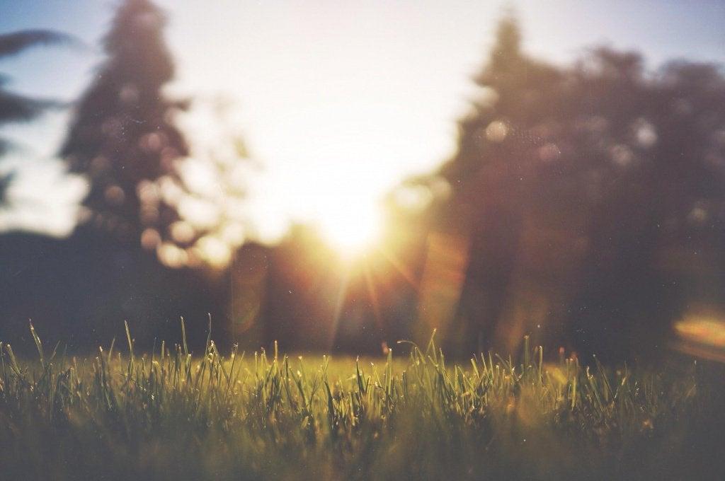 akşam güneşi batarken