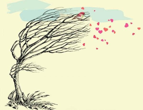 rüzgar ağaç kalpler