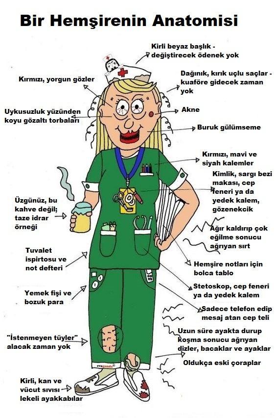 hemşire anatomisi