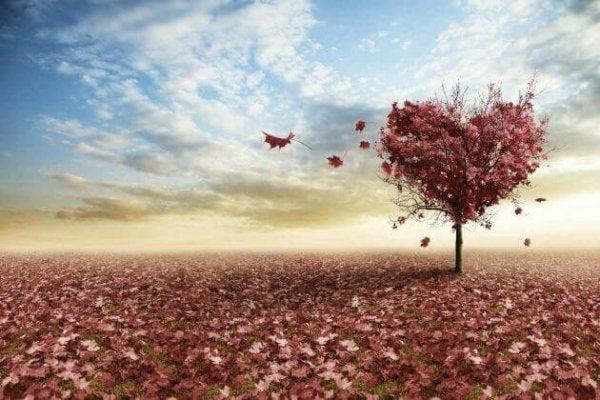 Erich Fromm'un Aşk Hakkındaki Üç Düşüncesi