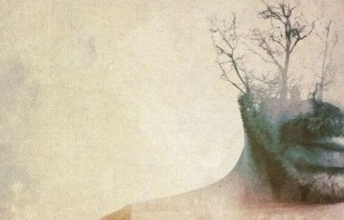 adam ve ağaç