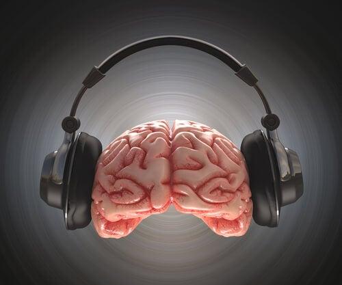 beyin müzik dinler