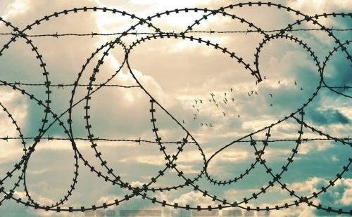 aşk çitleri