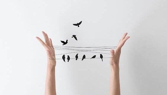eller arasına gerilen iplerdeki kuşlar