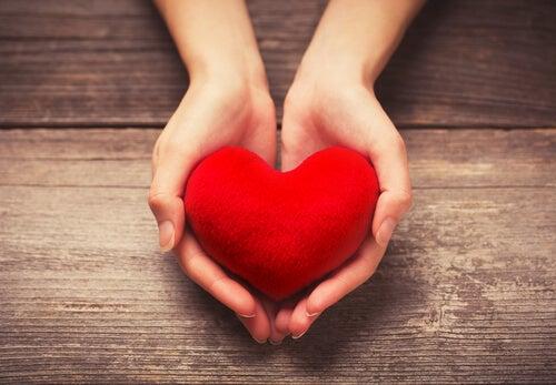 kalp şeklindeki avuçlarda kalp var