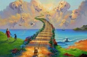 gökkuşağı-köprüsünde-köpekler