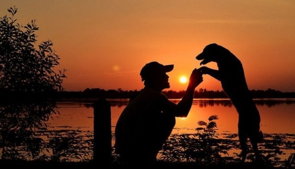 köpek ve insan