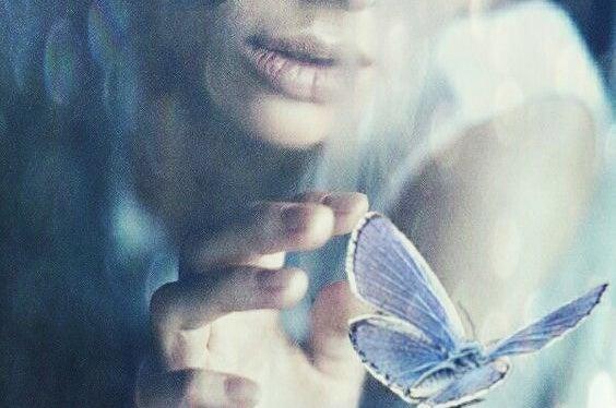 kelebeğe dokunmak