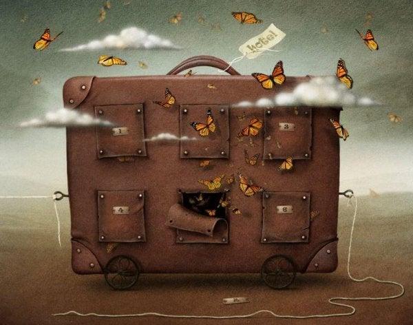 kelebekli bavul