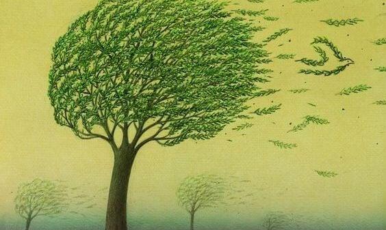 rüzgarda ağaç yapraklarından kuş