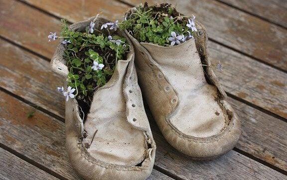 ayakkabıda çiçekler