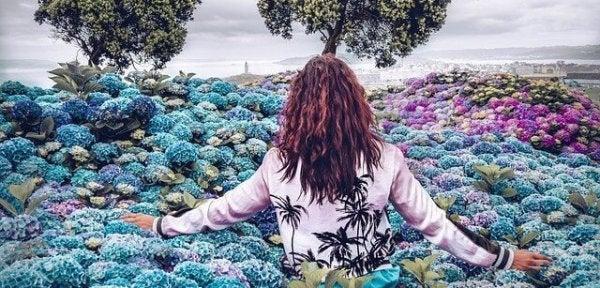 mavi çiçekler