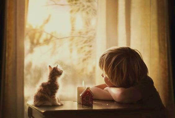 kedi ve çocuk
