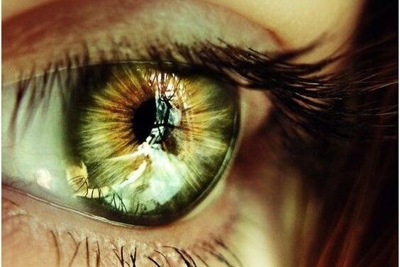 ela gözlü kadın