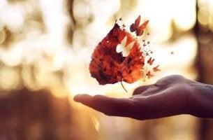 kelebek şeklinde uçan yaprak parçaları