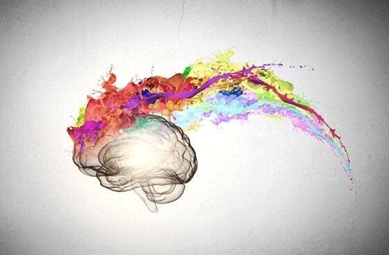 siyah beyaz beyin, rengarenk düşünceler