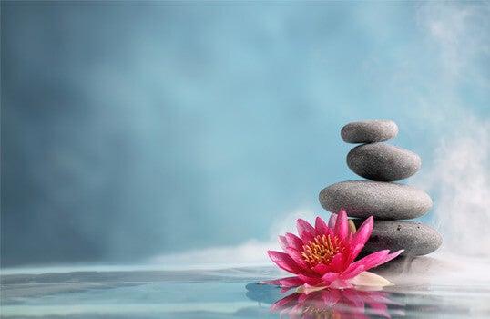 su üstünde taşlar ve çiçek var