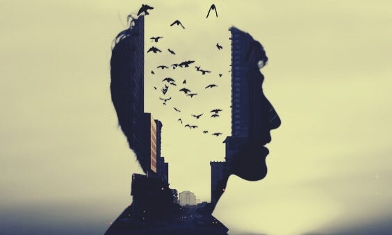 şehir kafasında uçan kuşlar