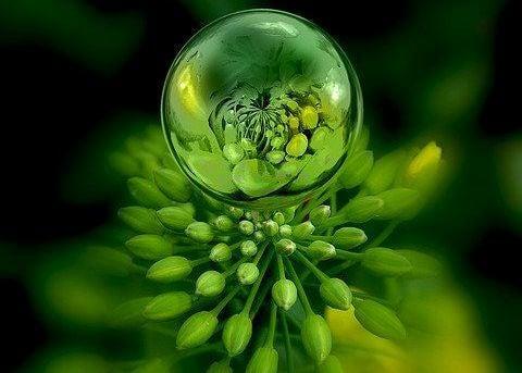 su damlasında yeşil