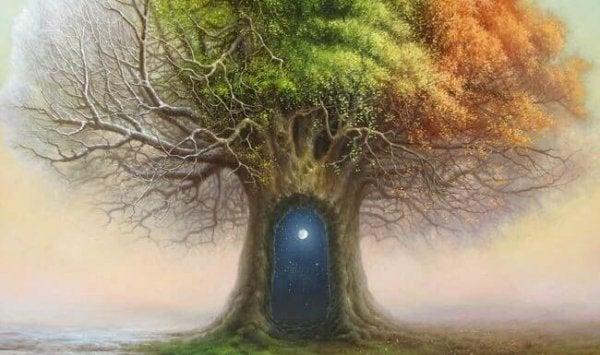 gece göğüne açılan ağaç kabuğu