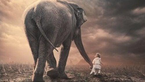 kız çocuğu ile fil çölde yürüyor