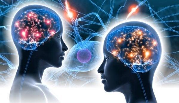 iletişen insanların zihinleri