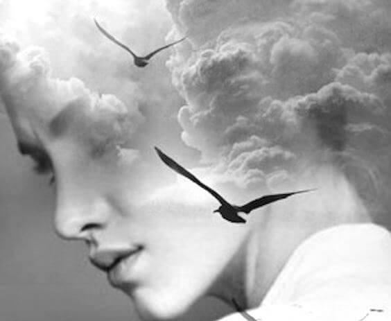 uçan kuşlar, gökyüzü ve kadın suratı