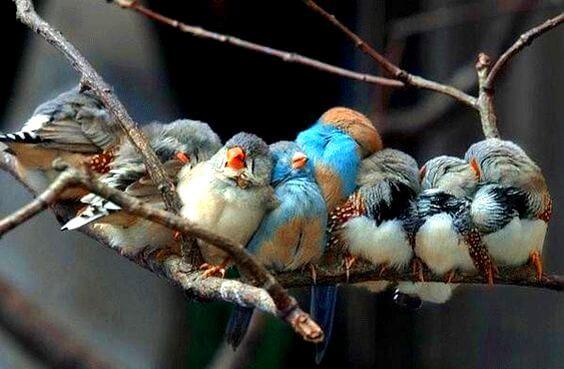 Hayatın Size Verdiği Güzellikler, Hak Ettiklerinizdir