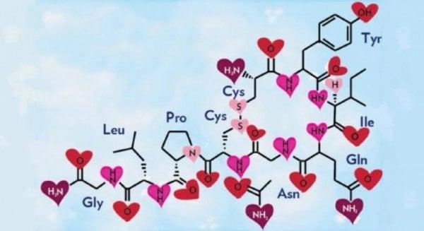 oksitosin dizilimi