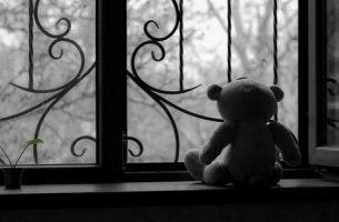 pencere önündeki oyuncak ayı