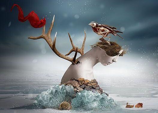 denizde kafaya yuva yapan kuş