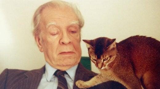 Borges ve kedi