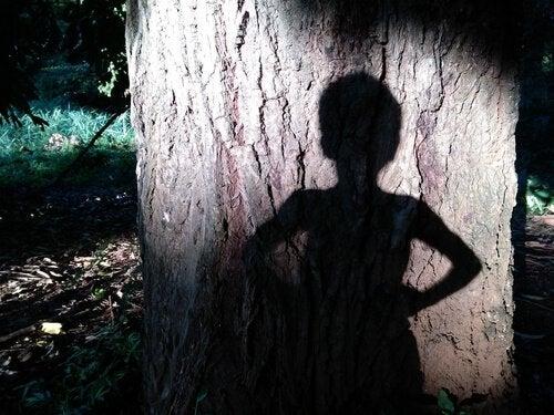 ağaçta gölge