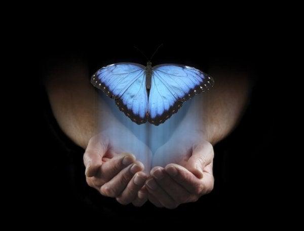 avuçta bir mavi kelebek