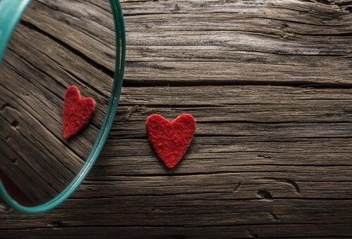 kalp ve aynada görüntüsü